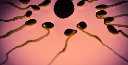 does chemotherapy cause infertility and ed in men